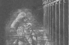 El lamento fantasma del paco rabioso de Lora